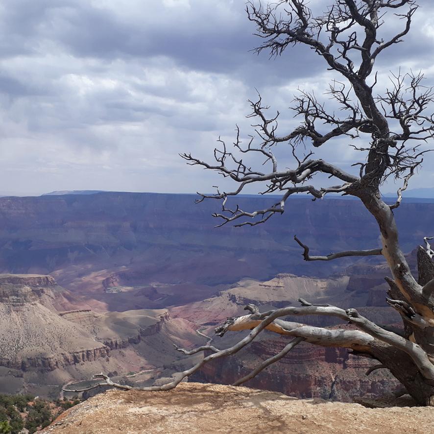 Grand Canyon Rive Nord